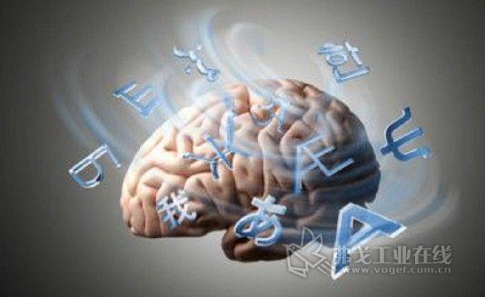 这表明,开始学习语言的年龄段对于形成语言学习的大脑结构是至关重要图片