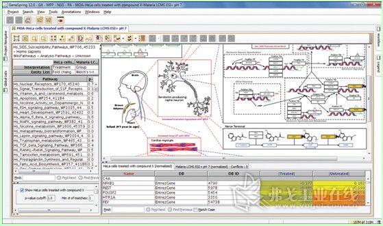 """图6.""""代谢组学""""中信号通路分析以及展示与相关基因、蛋白以及其他代谢产物的网络关系。"""