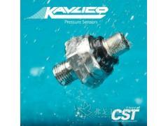 Kavlico压力传感器