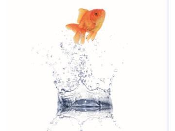 医用注射水生产制造