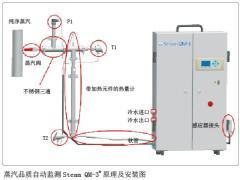 蒸汽品质自动监测在制药行业的应用