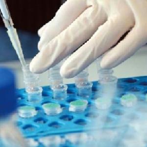 GMP生物制药项目调试与确认