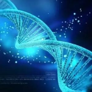 生物制药行业的发展瓶颈以及地域竞争格局