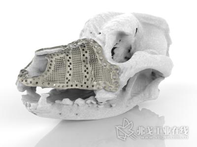 拯救一名挚爱的家庭成员 — 增材制造技术在兽医外科手术中的应用