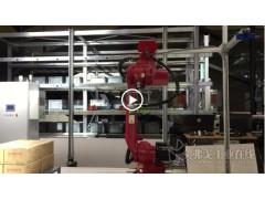 CeMAT ASIA 2018:【京东展台:W2-A4】机械臂视觉配合地狼AGV进行的中件拆码垛场景