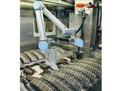 机器人助力铁轨维修
