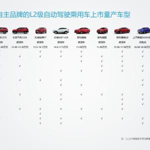 L2级已量产,L3/L4级即将落地,国内自动驾驶企业发展到了什么阶段?