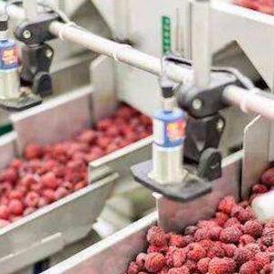 数字化:食品饮料行业的未来