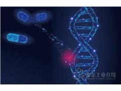 基因编辑 基因编辑助大豆在南方丰产
