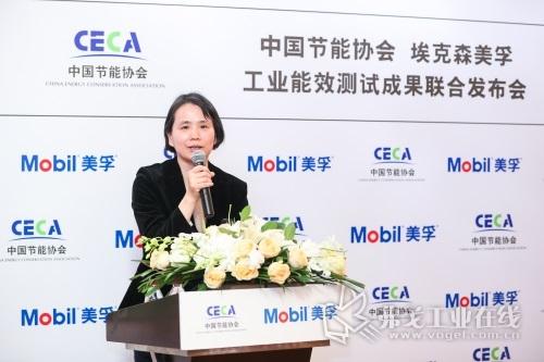 中国节能协会高级顾问、中节能工程技术研究院总工许泓致辞