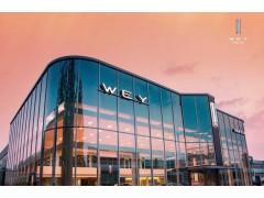 """行业艰难时刻 WEY推出""""三减三赋一加速""""政策助力经销商抵疫"""