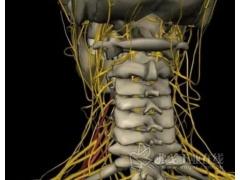 颈肩疼痛?这种新型疗法你应该了解一下